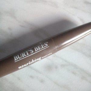 Burt's Bees Makeup - Burt's Bees Lipstick and Mascara